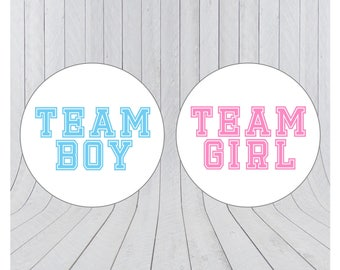 Team boy team girl stickers, Gender reveal stickers, Team pink, Team blue, he or she, pink or blue, Gender reveal party, 081