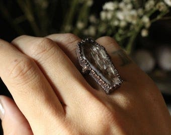 memento mori: mourning series,snakeskin ring,coffin,copper ring,remains,pagan,reptiles