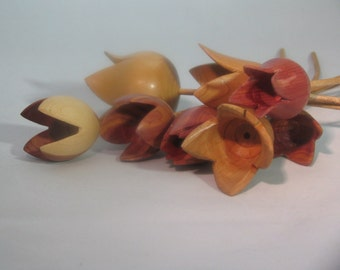 Hand Turned Spring Tulips in Cherry and Eastern Cedar