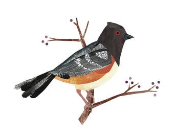 Spotted Towhee - Giclee Print of an Original Collage