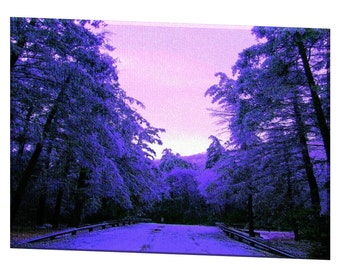 "Limited Edition ""Mountain Road"" - Blue Ribbon Winner - Artistic Photography Canvas Print - 10% of Proceeds for Charity"