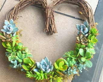 Living Succulent Wreath - Half-Heart