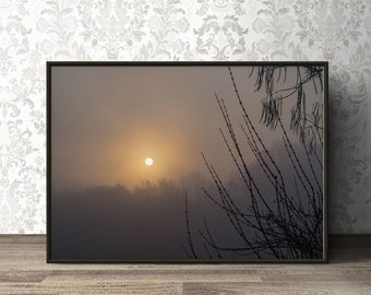 Foggy Sunrise Landscape,Printable Photography,Fine Art Download Poster,Home Wall Decor,Nature,Tree,Fog,Sun,Silhouette,Art,Living Room,Poster