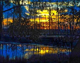 Deerhaven Conference Center, Central Florida, USA,  - Canvas Gallery Wrap