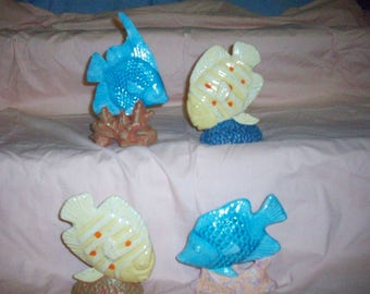 Fish for aquarium (4) sold separately