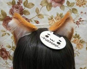 Cat Ears Ochre White