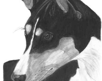 Custom Pet Portrait, Charcoal Drawing, Realistic- Dog, Cat, Horse, Bird, Reptile, Commission Work