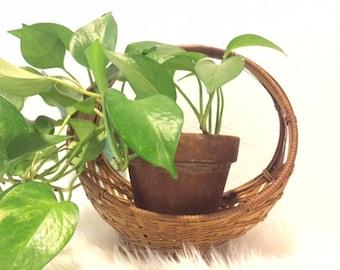 Vintage Decorative Planter Basket