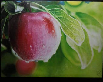 Apple by ART