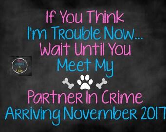 Partner in Crime Announcement, Dog Pregnancy Announcement, Pregnancy Chalkboard