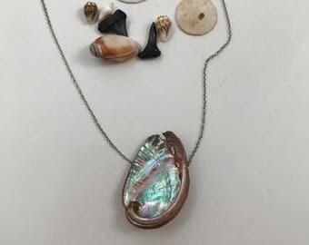 Miniture Abalone Necklace // MERMAIDS PURSE