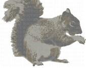 Squirrel svg cut file
