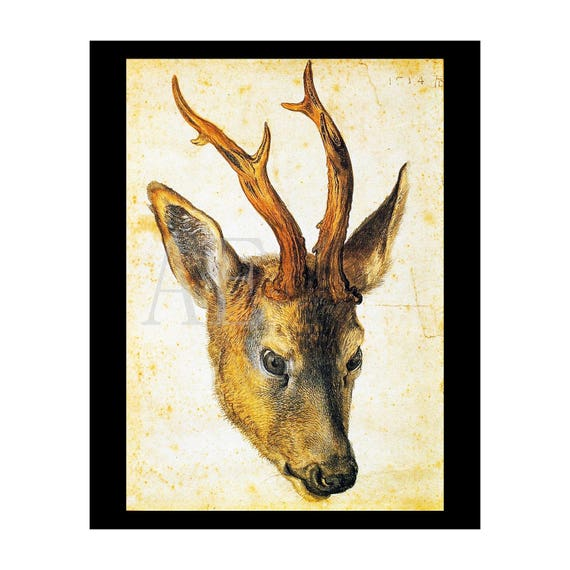 PR-103 Artistic Ephemera Print ~ One 8x10 or Two 5x7s ~ Albrecht Durer ~ Head of a Stag