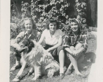 Vintage Snapshot photo 1948 Young Ladies Sit Grass Collie Dog Pet