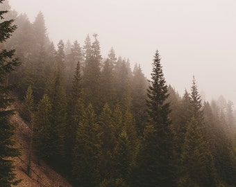 Foggy Forest Photography, Fine Art Print, Washington Photography, Forest Decor, Dreamy Scene, Surrealist Photography, Selkirk Mountains
