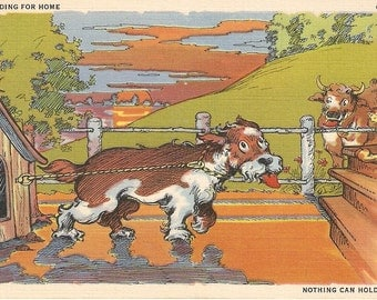 Nothing can hold us, dog comic postcard, vintage postcard, cow, cat, farm