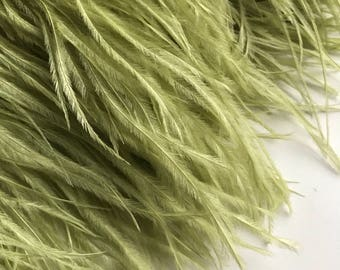 VOGUE OSTRICH Fringe , Light Celery Green  / 3009