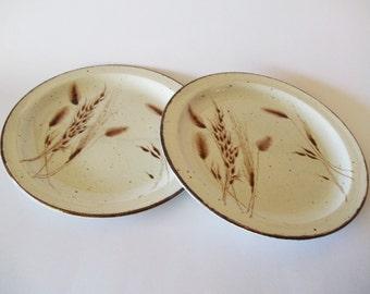 "Midwinter Stonehenge Wild Oats Dinner Plates, Wedgwood 10-1/2"" Set of 2, England, 1970s-1980s"