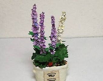 miniature hollyhock in porcelain pot