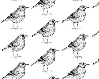 Black + White Bird Fabric - Bird! By Taraput - Black and White Woodland Nursery Bird Cotton Fabric By The Yard With Spoonflower