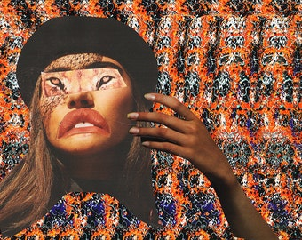 Magic Eye III / Limited Edition Print /  Illusion / Cat Lady/ Collage Art (sizes a4 - a3)