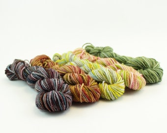 NEW Rise Up Mini Sock Skein Set B - 50g/200yd - 5 Variegated Minis
