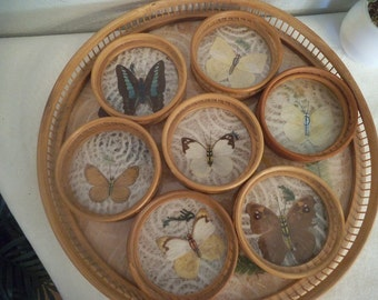 Vintage 8 pc Bamboo Tray and Butterfly Coaster set ~ Victorian Romantic cottage Server Set