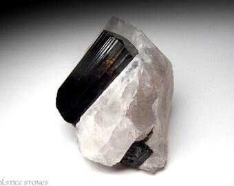 Black / Dravite Tourmaline on Quartz Crystal, AA Grade Piece // Root Chakra // Crystal Healing // Mineral Specimen