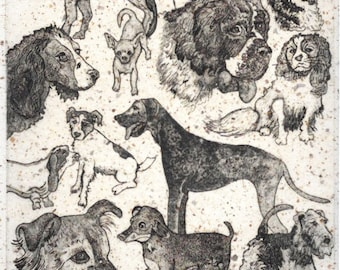 Dog Aquatint Etching-Speckled Pups-Classic Canine Breeds-Monoprint-10 x 12 inches