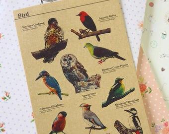 Bird cartoon deco Kraft Stickers