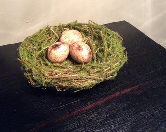Petite Spring Mossy Birds nest with speckled eggs