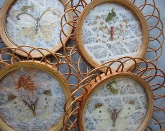 Vintage Rattan Drink Coasters with Preserved Butterflies Set of 4