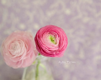 Pink & Purple ~ 8x10 photo print