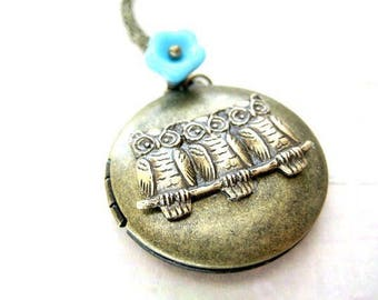 Owl Locket Necklace,Photo Locket, Owl Pendant Necklace,Owl Necklace, Owl Jewelry, Picture Locket, Bird Necklace,Brass Locket,Memory Locket