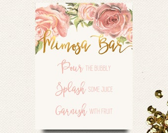 8x10 Mimosa Bar Sign Printable PDF File    Floral Gold Blush Mimosa Shower