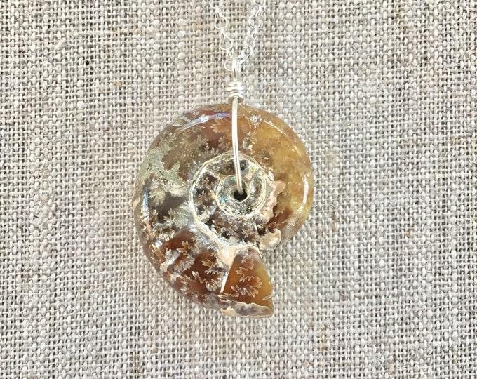 Whole Ammonite Pendant Necklace