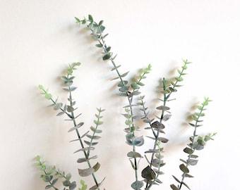 Eucalyptus, faux eucalyptus, eucalyptus wreath, eucalyptus garland, Protea,  eucalyptus plant, eucalyptus stem, dried eucaly