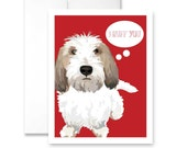 I RUFF YOU - with PBGV - Greeting Cards - pack of 6