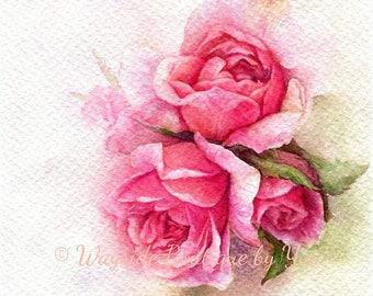 "PRINT – Pink Roses Watercolor painting 7.5 x 11"""