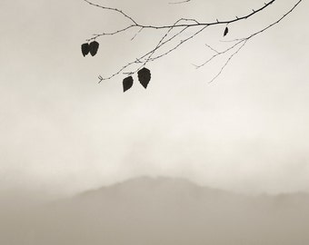 minimalist photography, landscape photography, black and white photography, sepia photography, modern rustic, mountain photography
