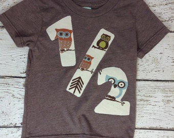6 month, 1/2 shirt, I'm half a year, 6 month shirt, 6month picture, baby shower, baby gift, baby clothes, owls, owl nursey