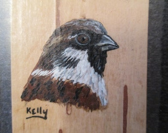 Bookmark - English House Sparrow hand painted on birch bark by Ann Kelly