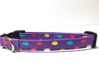 Dog Collar- No Eggs About It