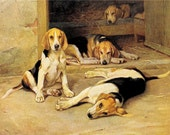 Vintage Beagle Dogs Print Animals Nature prints Puppy Hound Animal Lover gift framable art Christian prints Relgious art Bibles Antique