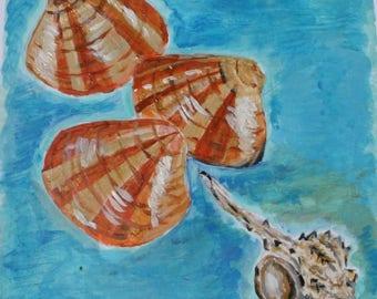 Acrylic painting of Sea Shells