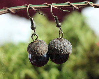 "Acorn earrings ""Automnal"" - Real acorns and magnetite beads"