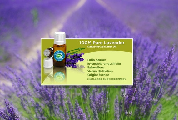 Lavender Essential Oil, Lavender, Lavender Oil, Essential Oils, Aromatherapy Oil, Pure Essential Oil, Natural Lavender, Pure Lavender
