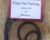Horse Tail Whiskers