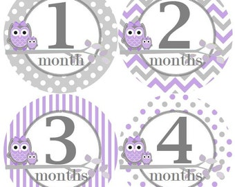 Baby Monthly Milestone Growth Stickers in Lavender Grey Owls MS323 Nursery Theme Baby Shower Gift Baby Photo Prop