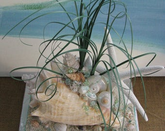 Conch Shell Beach Wedding Centerpiece~~Starfish Seashell Centerpiece~Coastal Centerpiece